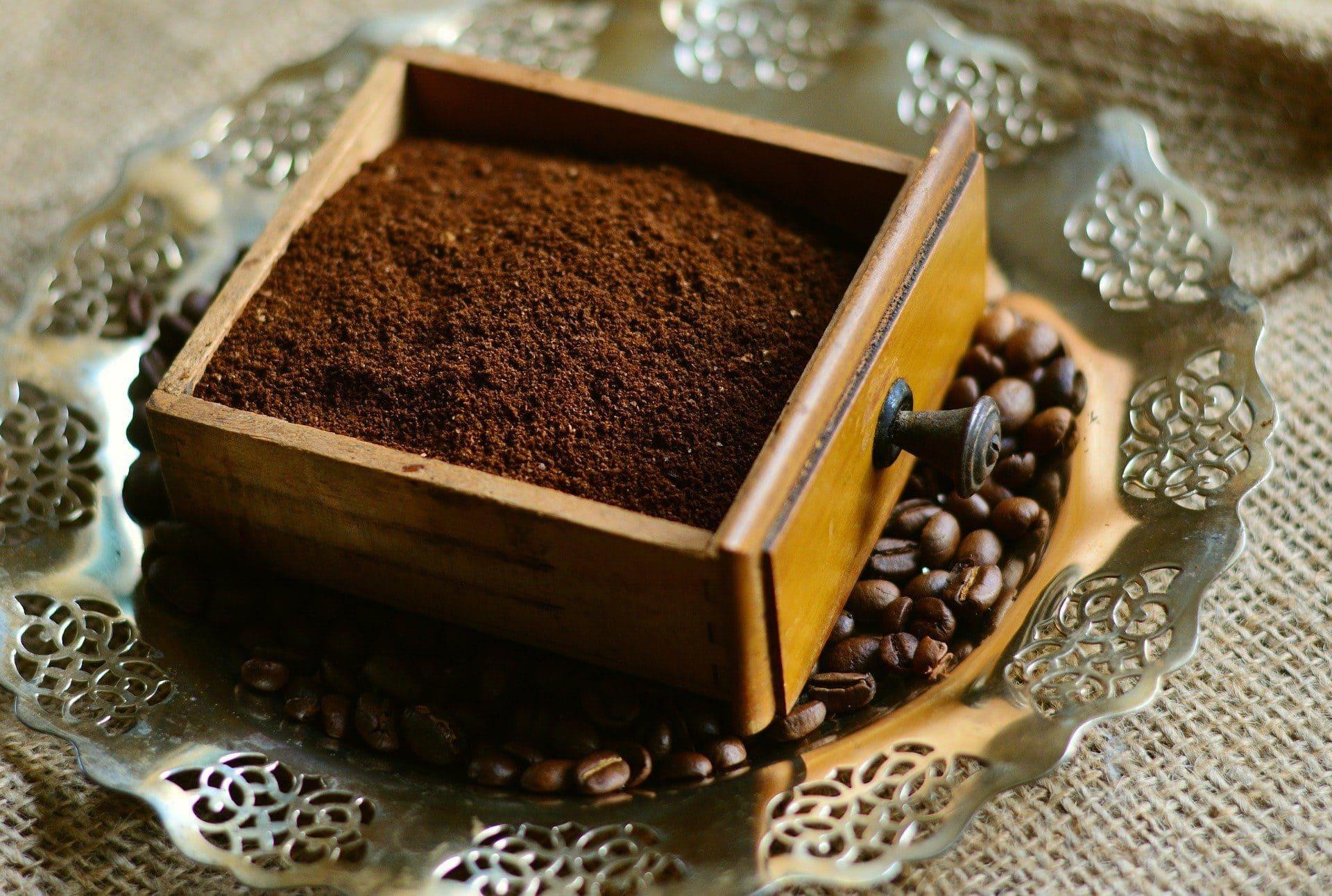 L'utilité de marc de café au jardinage